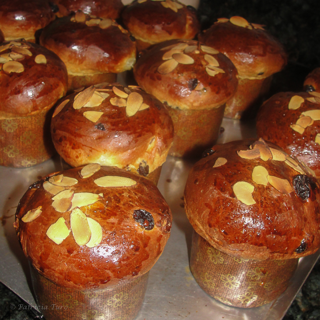 Panettone: A Traditional Sweet Bread is a Symbol of Christmas ...
