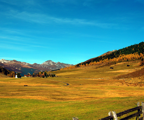 Specialty Travel: Spätzli And Game, A Swiss Specialty