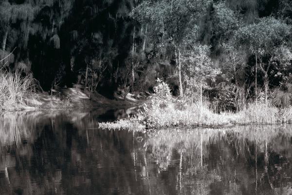 Owahee Trail Palm Beach
