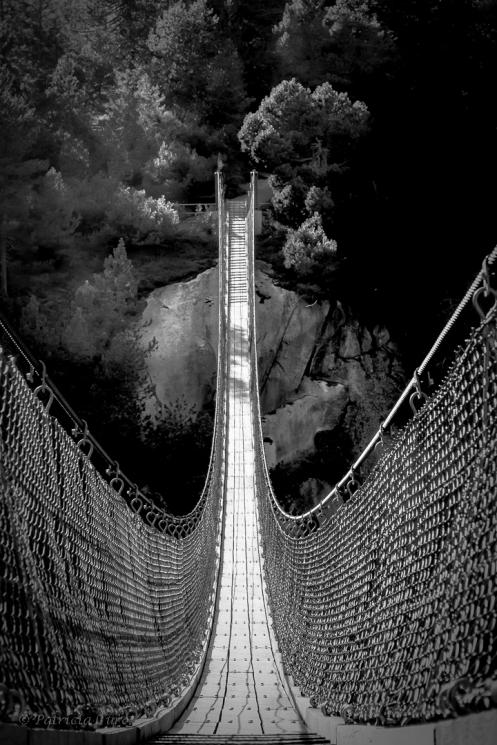 gelmersee-padestrian-bridge